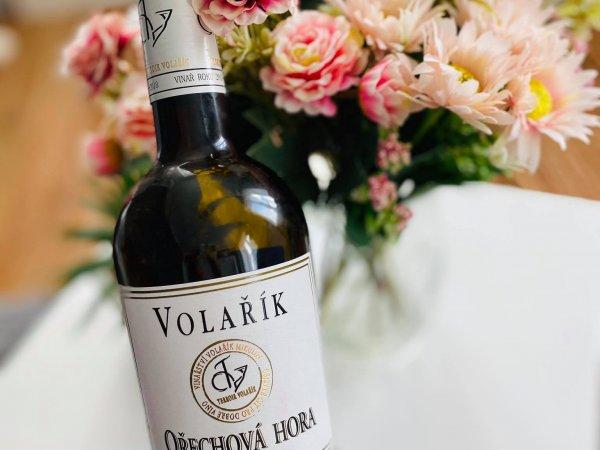 Volařík naše víno